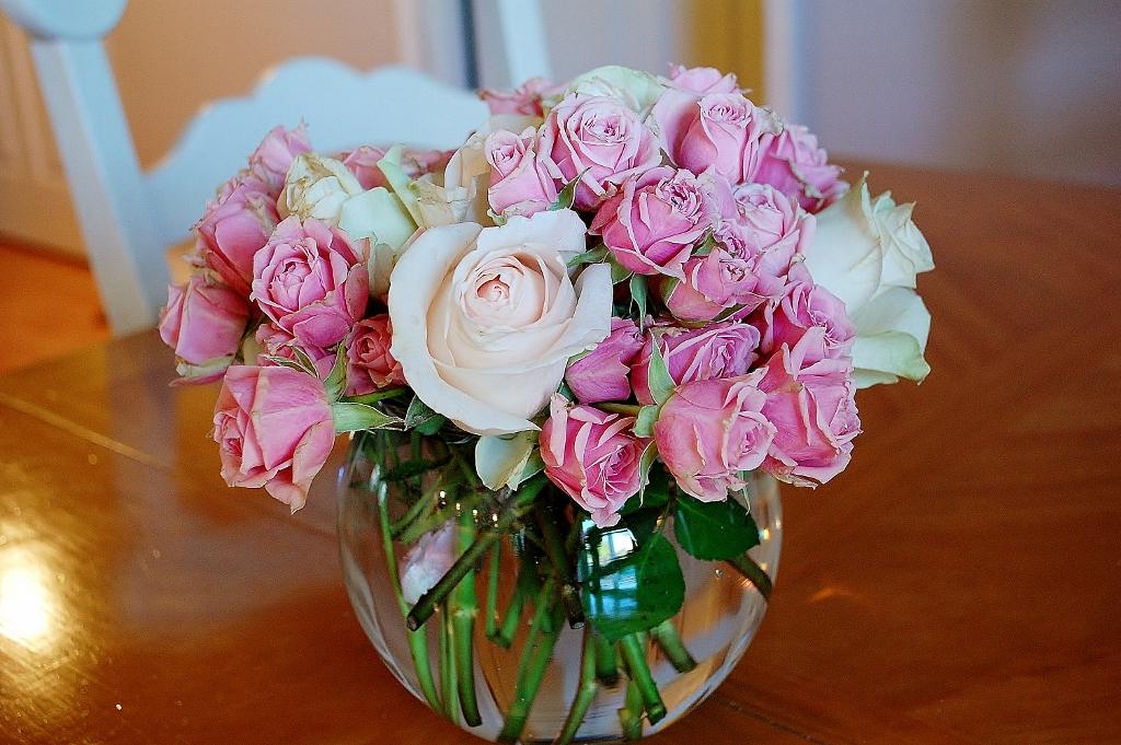 Pink Roses   missfrugalfancypants.com